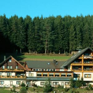 Hotelbilleder: Waldhotel Auerhahn, Eisenbach