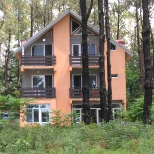 Φωτογραφίες: Villa Vachnadze, Shekhvetili