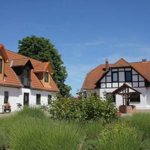 Hotel Pictures: Radler's Hof, Letschin