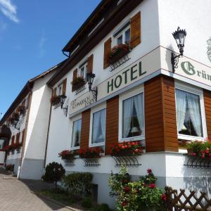 Hotelbilleder: Hotel Landgasthof Grüner Baum, Hochdorf