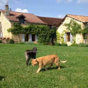 Hotel Pictures: Le Mas, Corgnac-sur-l'Isle