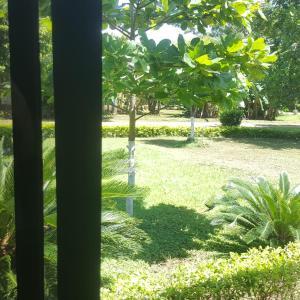 Hotel Pictures: Villa Berta Rooms, Nicoya