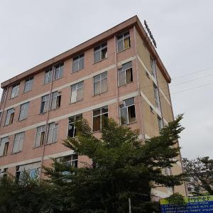 Hotel Pictures: NGG Hotel, Bahir Dar