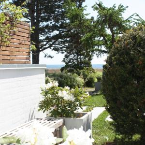 Hotel Pictures: The Beach GuestHouse, Greve Strand