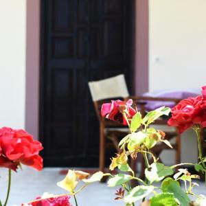 Fotografie hotelů: Freddie's Guesthouse, Orikum