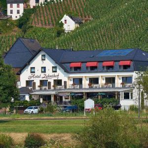 Hotel Pictures: Hotel Zehnthof, Ürzig