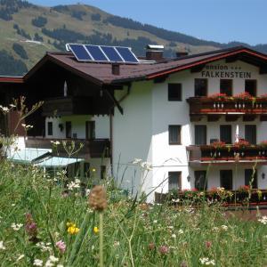 酒店图片: Pension Falkenstein, 萨尔巴赫