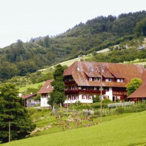 Hotel Pictures: Ferienwohnung Thomas Sester, Gengenbach