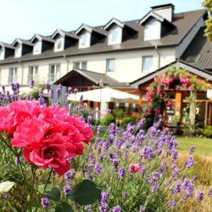 Hotel Pictures: Hotel und Restaurant Eurohof, Duisburg