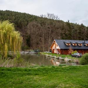 Hotel Pictures: Srub Celina, Borotice