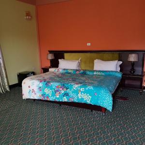 Hotel Pictures: Tsenageb Lodge, Sululta