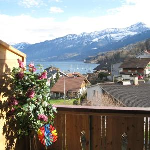 Hotel Pictures: Seebrise, Faulensee