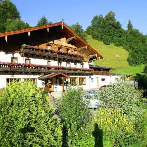 Hotellikuvia: Gasthof Friedlwirt, Unken