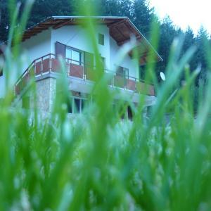 Fotos del hotel: Villa Darevi, Gotse Delchev