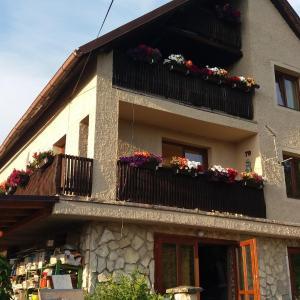 Hotel Pictures: Apartment Sharka, Děčín