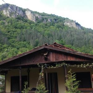 Fotos del hotel: Villa Yana, Ribarica