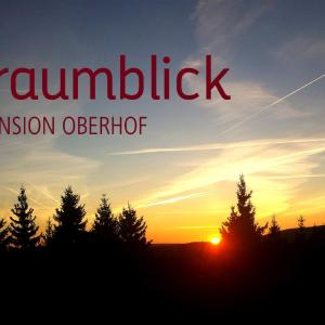 Hotel Pictures: Pension Traumblick, Oberhof