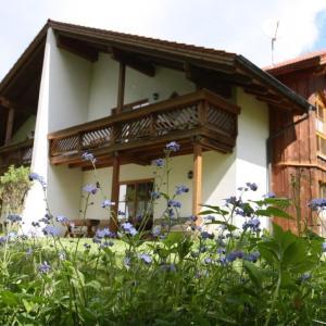 Hotel Pictures: Ferienhäuser 'In der Waldperle', Bischofsmais