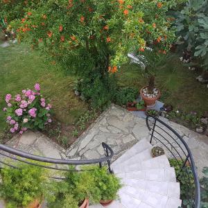 Hotelbilder: Guest House Veselina, Primorsko