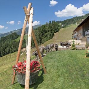 Photos de l'hôtel: Klockerstuben, Rohrberg