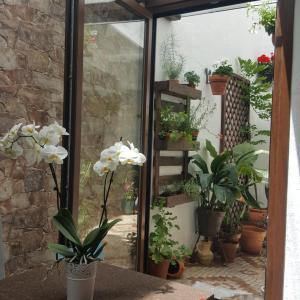 Hotel Pictures: Casa 'Fuente de los 7 caños', Mijas