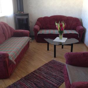 Hotel Pictures: Kiige Big Apartment, Pärnu