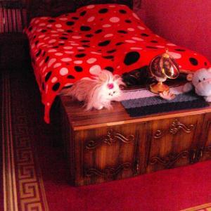 Φωτογραφίες: Natia Hostel Kutaisi, K'ut'aisi