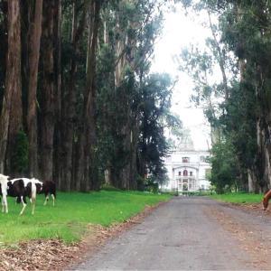 Hotel Pictures: Hacienda La Cienega, Latacunga