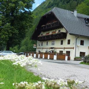 Hotelbilleder: Gasthof Steinbräu, Faistenau