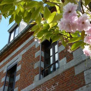 Hotel Pictures: Carpe-Dem, Sains-du-Nord