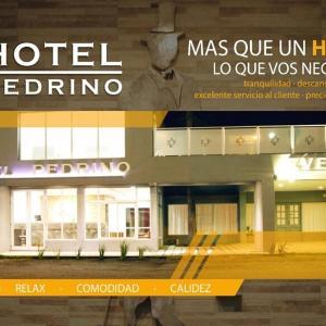 Hotellikuvia: Hotel Pedrino, Venado Tuerto
