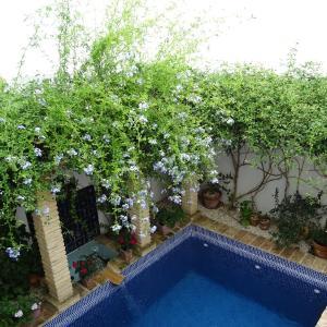 Hotel Pictures: Casa la Loba, Medina Sidonia