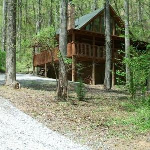 Fotos del hotel: Bearly Visible Cabin, Sevierville