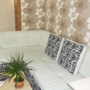 酒店图片: Studio Apartment with view on Kama, 彼尔姆