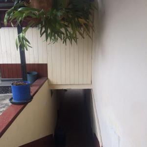 Hotel Pictures: Alojamiento Comunitario Cahuasquí, Tumbabiro