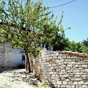 Fotos del hotel: Guest House Vasili, Berat