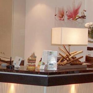 Hotel Pictures: Palais Des Fleurs Restaurant Les Capucines, Aix-les-Bains
