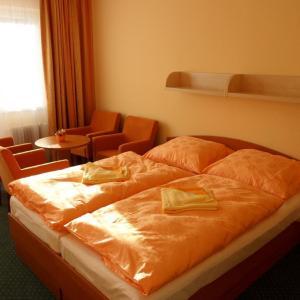 Hotel Pictures: Penzion Horacko, Tři Studně
