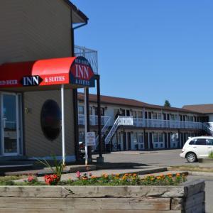 Hotel Pictures: Red Deer Inn & Suites, Red Deer