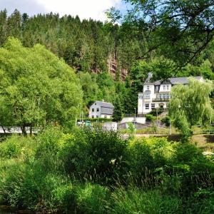 Hotelbilleder: Flair-Hotel Waldfrieden, Meuselbach-Schwarzmühle