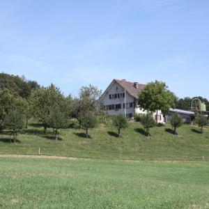 Hotel Pictures: BnB im Waldhof, Schneisingen