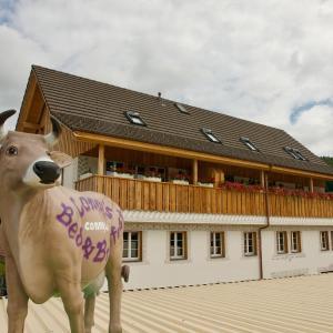 Hotel Pictures: Conny's B&B, Niederweningen