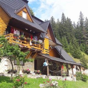 Hotel Pictures: Apartments Vučko Vlašić, Gornja Šišava