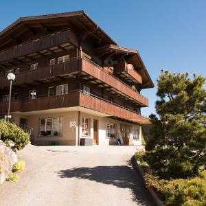 Hotel Pictures: Guesthouse Alive, Adelboden
