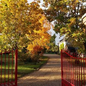Hotel Pictures: Chambre d'hôtes - Le jardin des Patissons, La Foret Du Parc