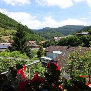 Hotelbilleder: Ferienwohnung Marliese, Bad Peterstal-Griesbach