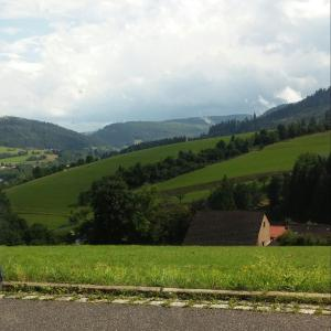 Hotel Pictures: Angelina, Baiersbronn