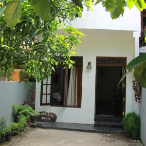 Foto Hotel: Black Bird Villa, Weligama