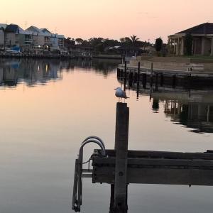 Hotelfoto's: Waterside Canal Dreams, Mandurah