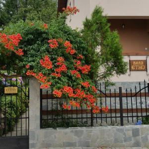 Hotel Pictures: Villa Etno, Sapareva Banya